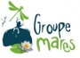 Logo groupe mare